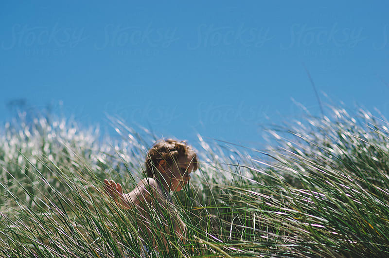 Toddler in Tall Grass by Ali Deck for Stocksy United