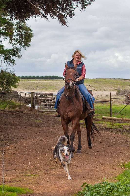 Country Horse Riding on Farm with Cattle Dog by Rowena Naylor for Stocksy United