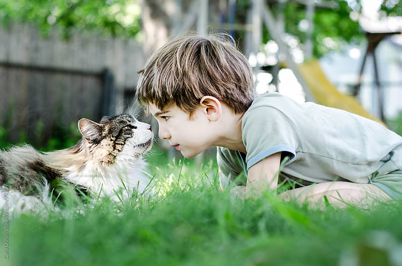 Child plays with his Maine coon cat in his backyard by Cara Dolan for Stocksy United