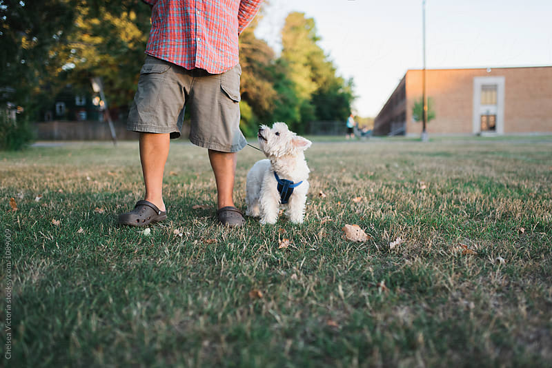 A dog and her owner on a walk by Chelsea Victoria for Stocksy United