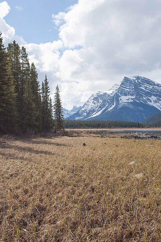 Canadian Rockies by Michael Overbeck for Stocksy United