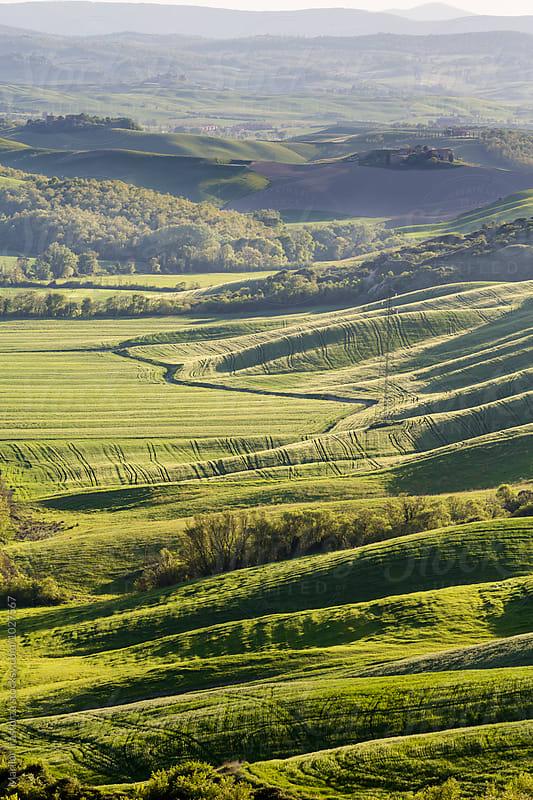 Tuscan rural landscape by Marilar Irastorza for Stocksy United