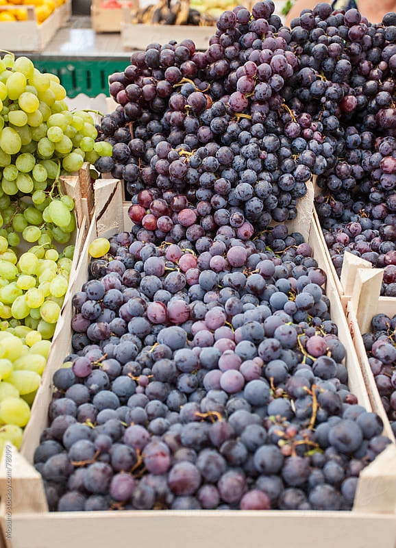 Crate of fresh organic grapes. by Mosuno for Stocksy United