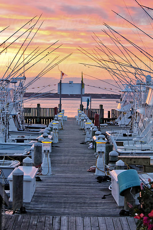 Walkway down the dock where all the fishing boats are parked by Monica Murphy for Stocksy United