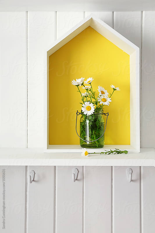Daisies in jars in yellow house on shelf by Sandra Cunningham for Stocksy United