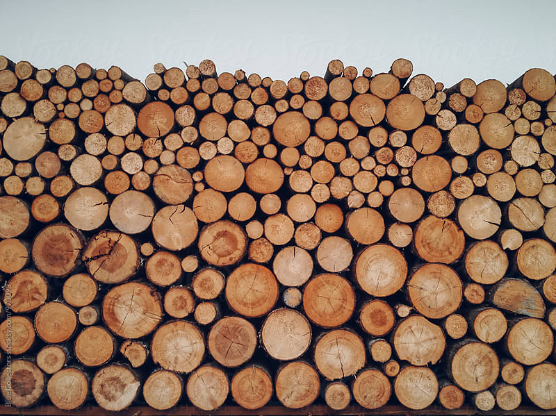tidy firewood for size by Jordi Rulló for Stocksy United