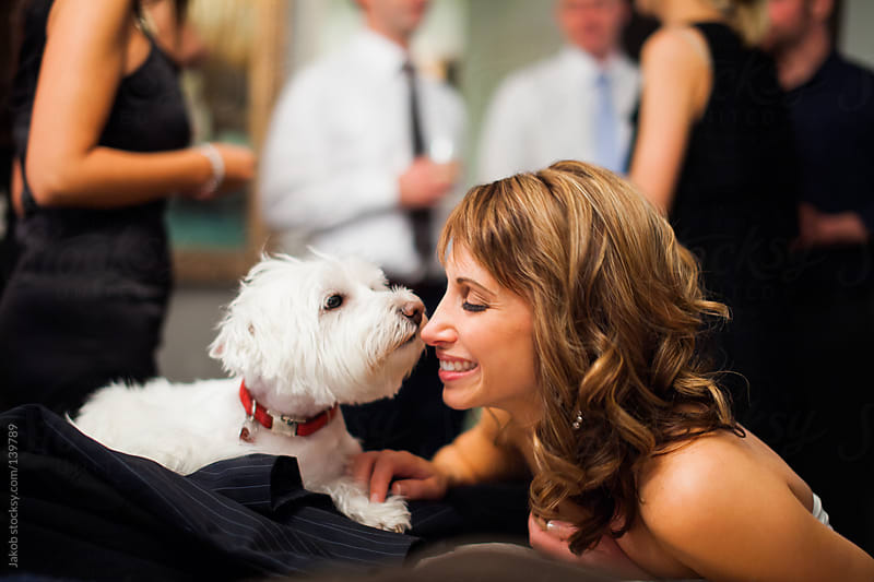 A cute white dog kissing a beautiful woman by Jakob for Stocksy United