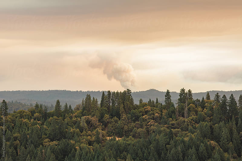 California wilderness scenery with wildfire burning in the distance by Amy Covington for Stocksy United