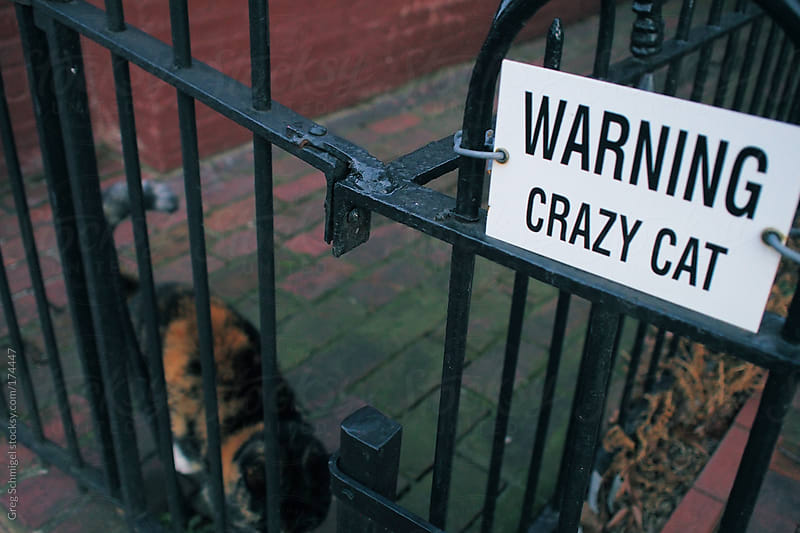 Warning sign on an old metal gate for a crazy cat by Greg Schmigel for Stocksy United