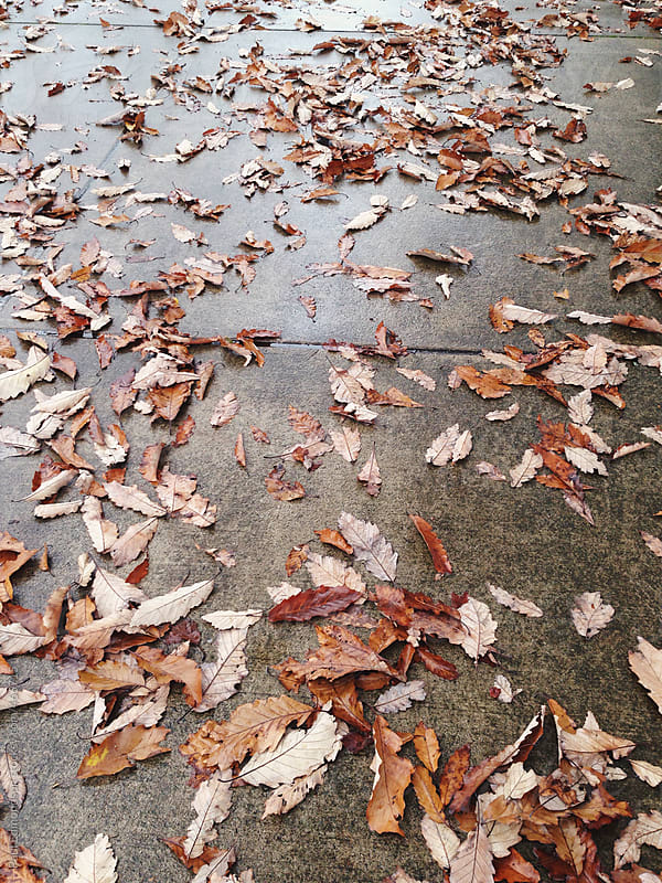 Pile of autumn leaves on sidewalk by Paul Edmondson for Stocksy United