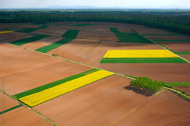 Aerial photo of a fertile cultivated field during spring season by Jelena Jojic Tomic for Stocksy United