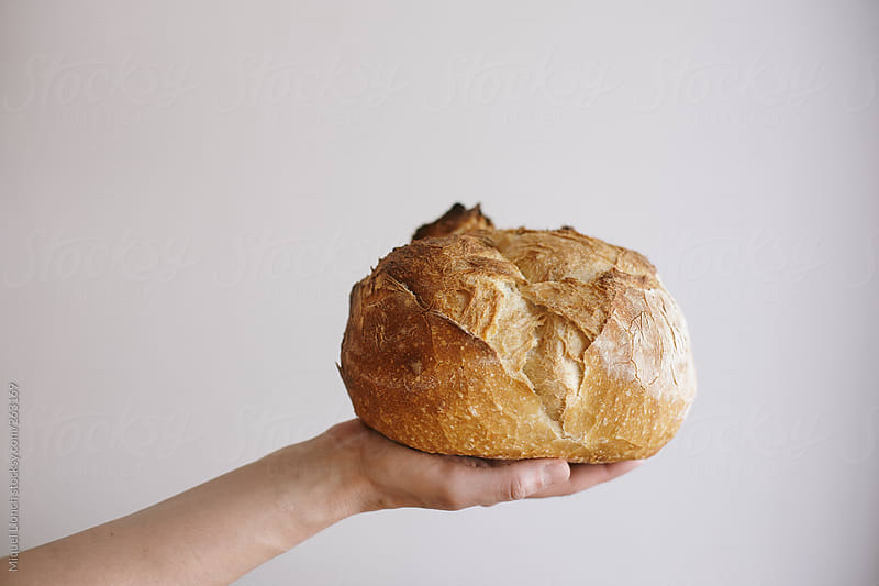 Close Up Of A Hand Holding Round Artisanal Bread With White Background By Miquel Llonch