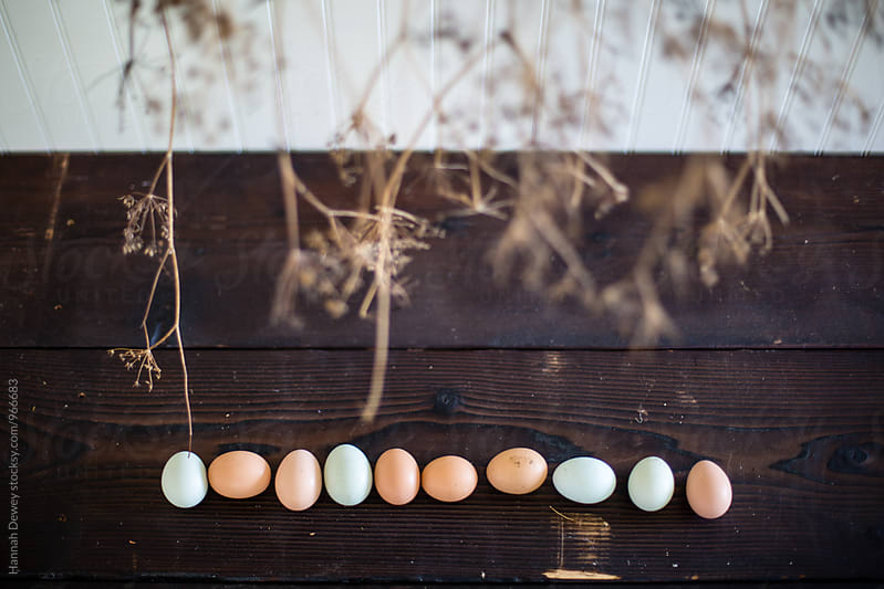 Farm fresh eggs on a barn table by Hannah Dewey for Stocksy United
