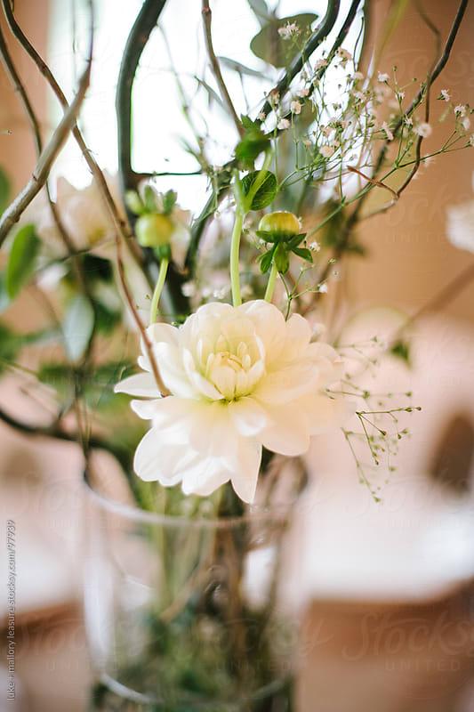 Wedding Decoration by luke + mallory leasure for Stocksy United