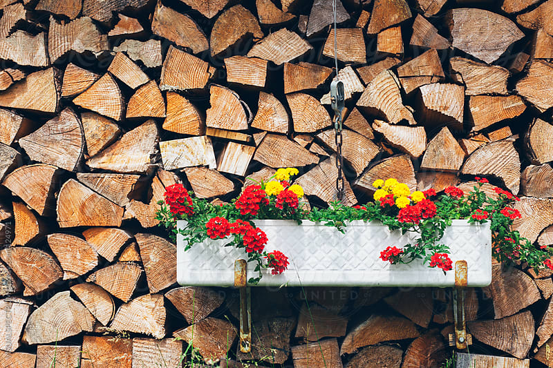 Piled Wood with Spring Flowers by VISUALSPECTRUM for Stocksy United