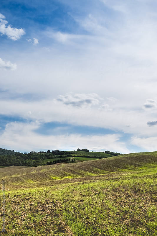 Summer Landscape of the Val d'Orcia, Tuscany by Giorgio Magini for Stocksy United