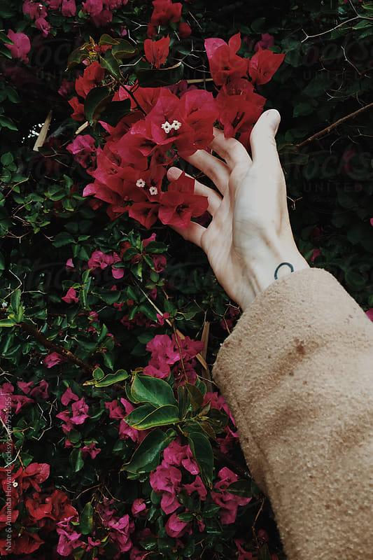 reaching for flowers by Nate & Amanda Howard for Stocksy United