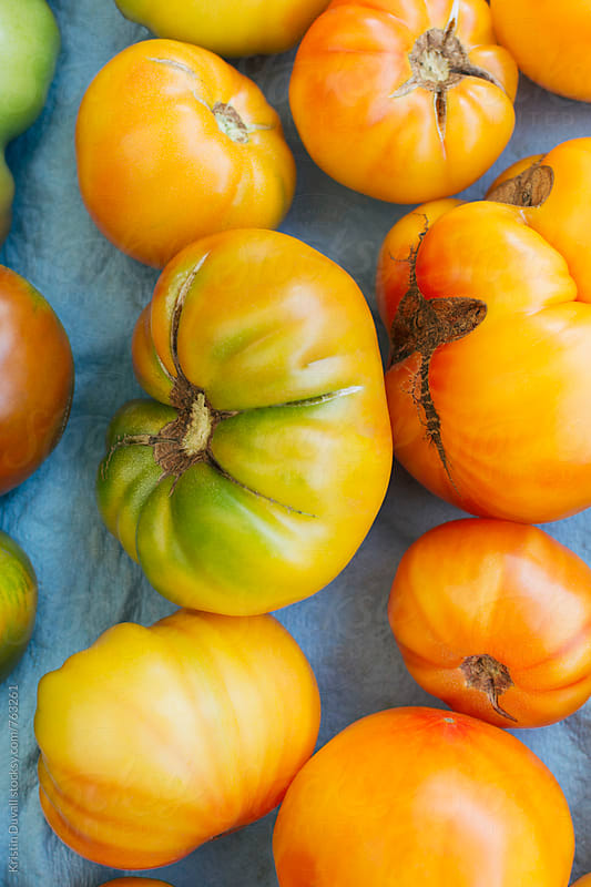 Organic heirloom tomatoes by Kristin Duvall for Stocksy United
