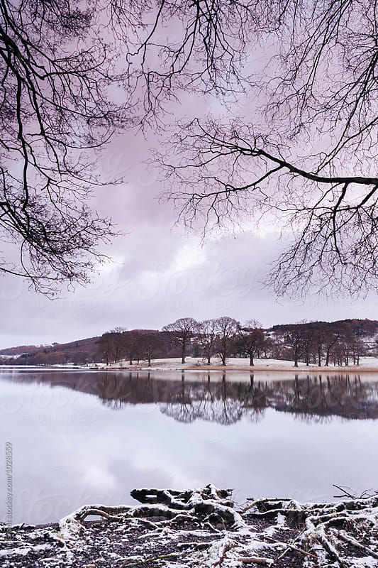 Snow and reflections on Esthwaite Water at dawn. Cumbria, UK. by Liam Grant for Stocksy United