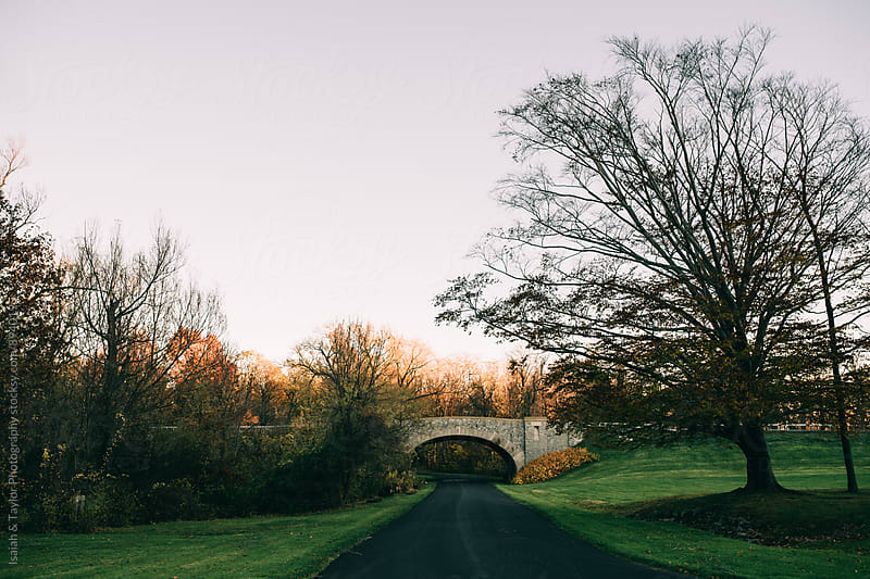 Road under bridge by Isaiah & Taylor Photography for Stocksy United
