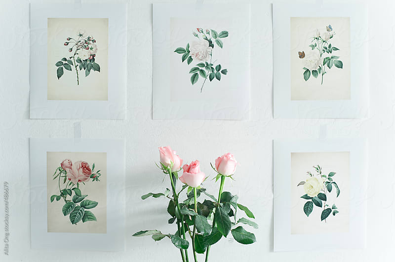 Vintage wall arts by Alita Ong for Stocksy United