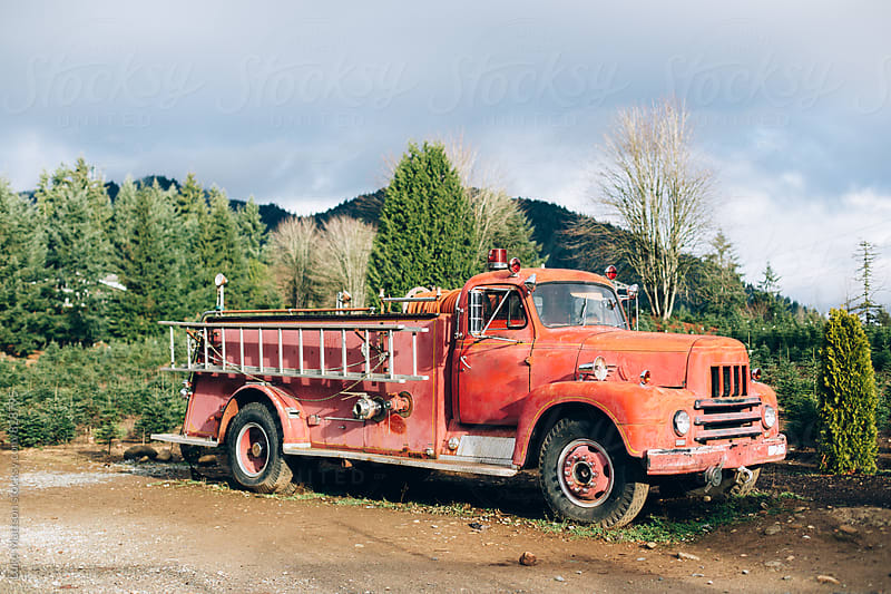 Old Rusty Fire Truck On Christmas Tree Farm by Luke Mattson for Stocksy United