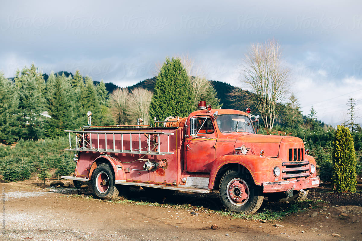 Old Rusty Fire Truck On Christmas Tree Farm   Stocksy United