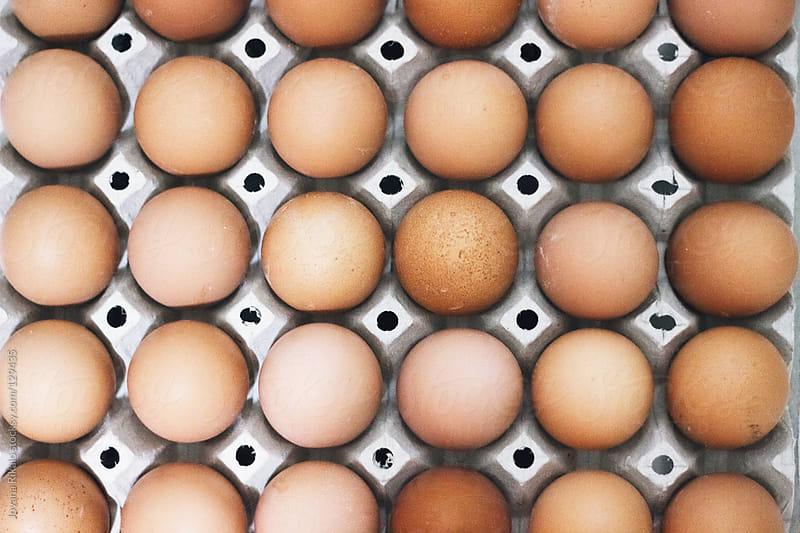 Fresh eggs in carton by Jovana Rikalo for Stocksy United
