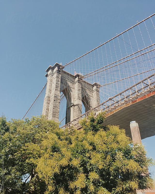 Brooklyn  by Joe Greer for Stocksy United