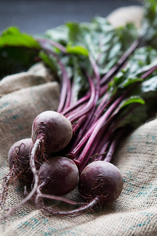 Fresh beetroots with green stalks by Aniko Lueff Takacs for Stocksy United