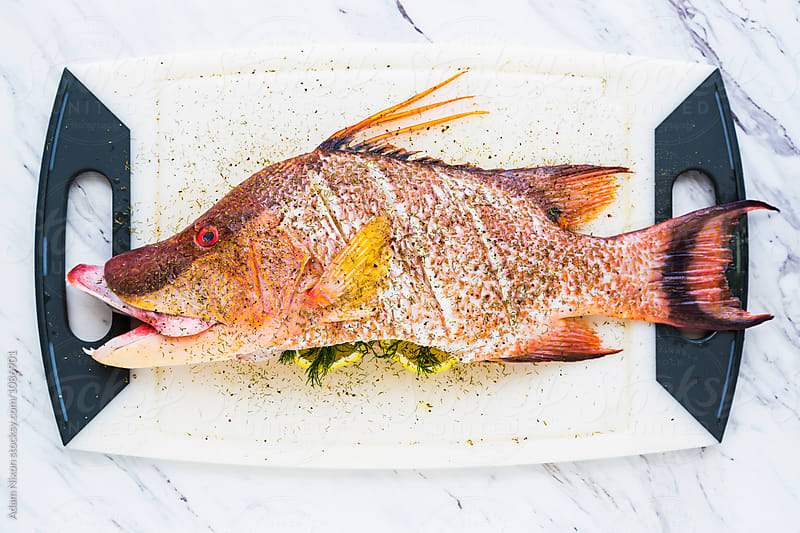 Fresh snapper ready for cooking by Adam Nixon for Stocksy United