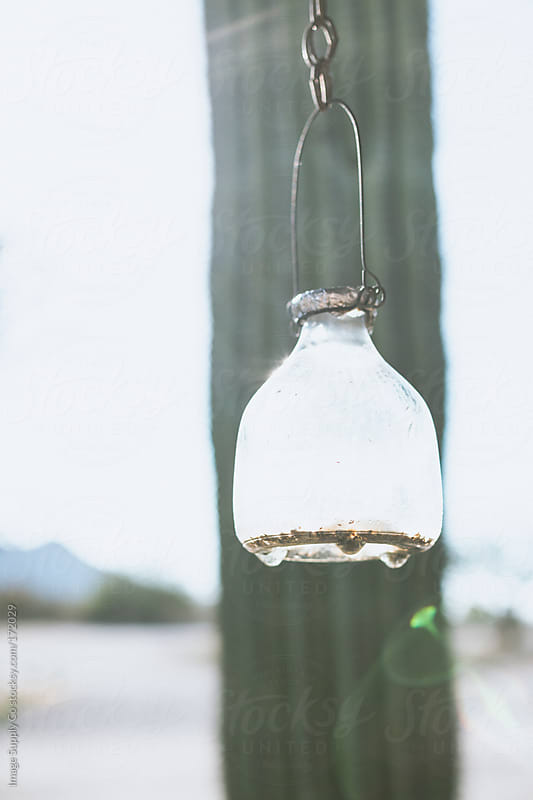 Glass Jar hanging from wire by Image Supply Co for Stocksy United