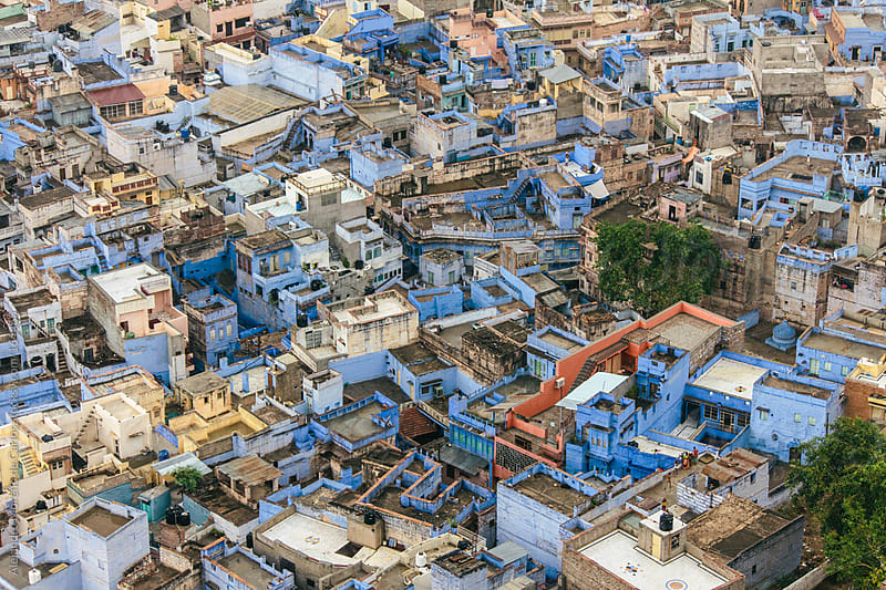 Blue cityscape with houses and buildings in Jodhpur, India by Alejandro Moreno de Carlos for Stocksy United