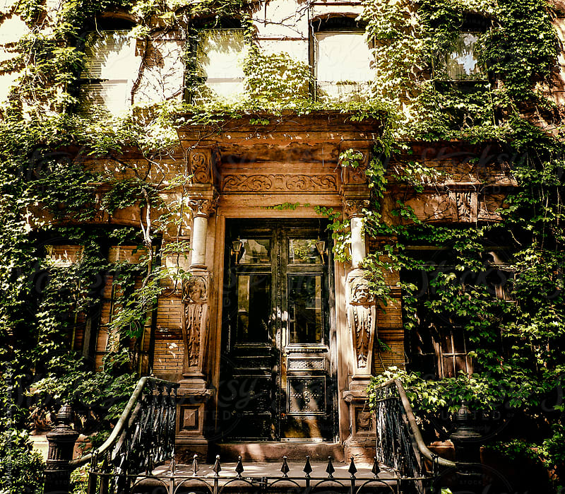 City: Ivy-Covered Brownstone by Vivienne Gucwa for Stocksy United