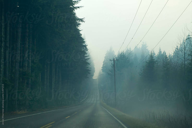 Foggy road in the northwest by Jesse Morrow for Stocksy United