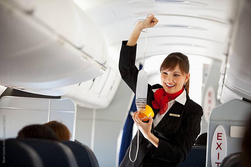 Resume of a flight attendant