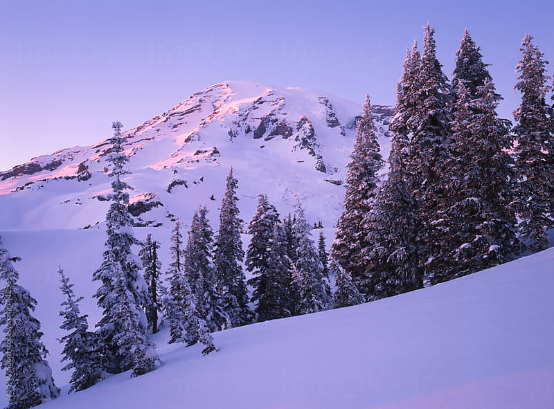 Blue twilight at Mount Rainier in winter by Mark Windom for Stocksy United
