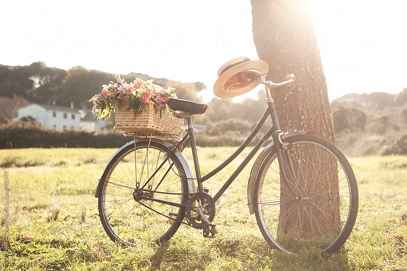 Vintage bicycle on the field with a basket of flowers by BONNINSTUDIO for Stocksy United