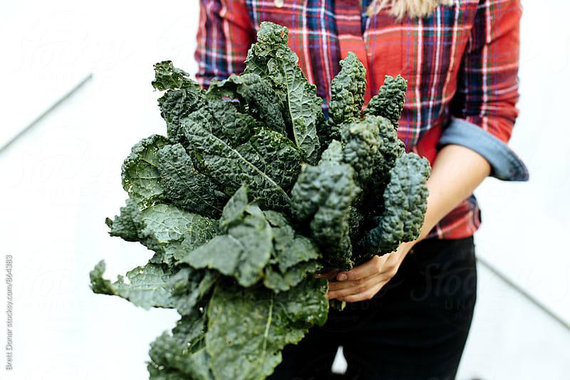 Lettuce by Brett Donar for Stocksy United