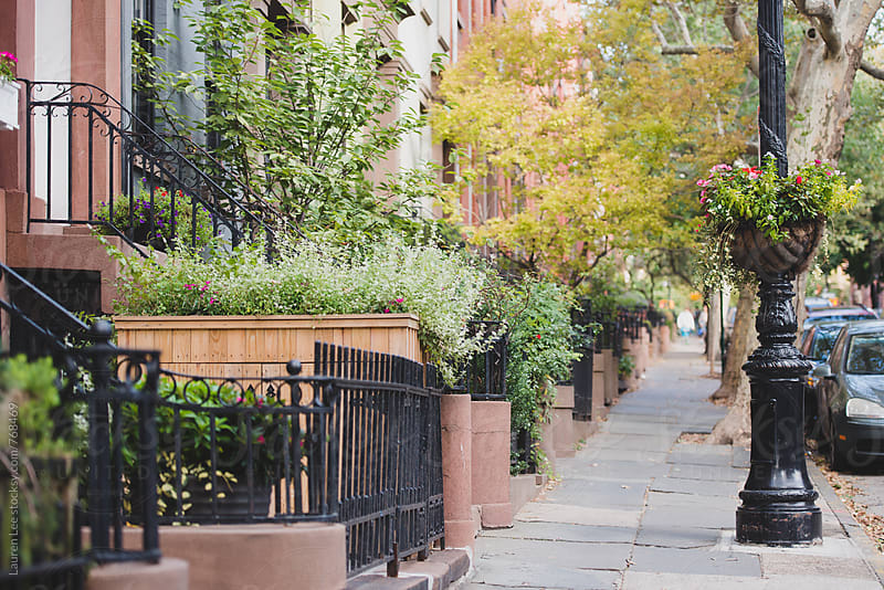 Pretty residential street in Brooklyn by Lauren Naefe for Stocksy United