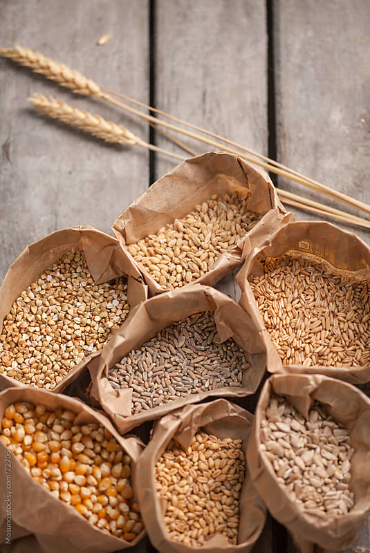 Different Types of Grains in Paper Bags by Mosuno for Stocksy United