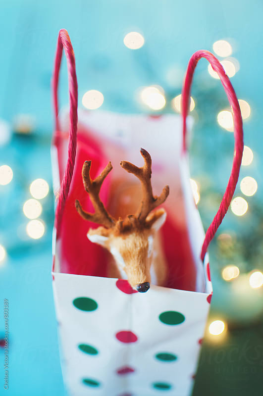 A toy deer sticking out of a christmas present  by Chelsea Victoria for Stocksy United