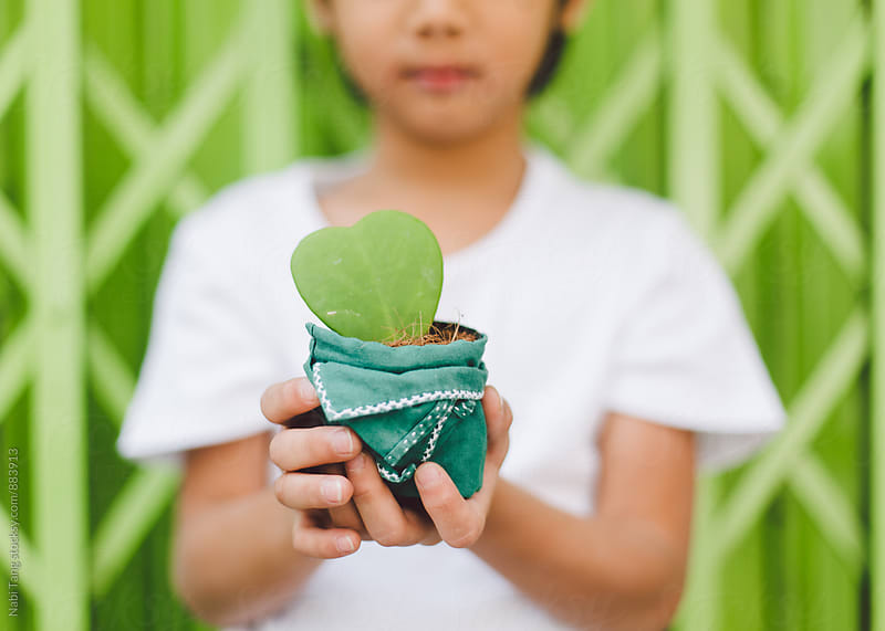 A boy in white t-shirt holding a plant pot in front of green background by Nabi Tang for Stocksy United