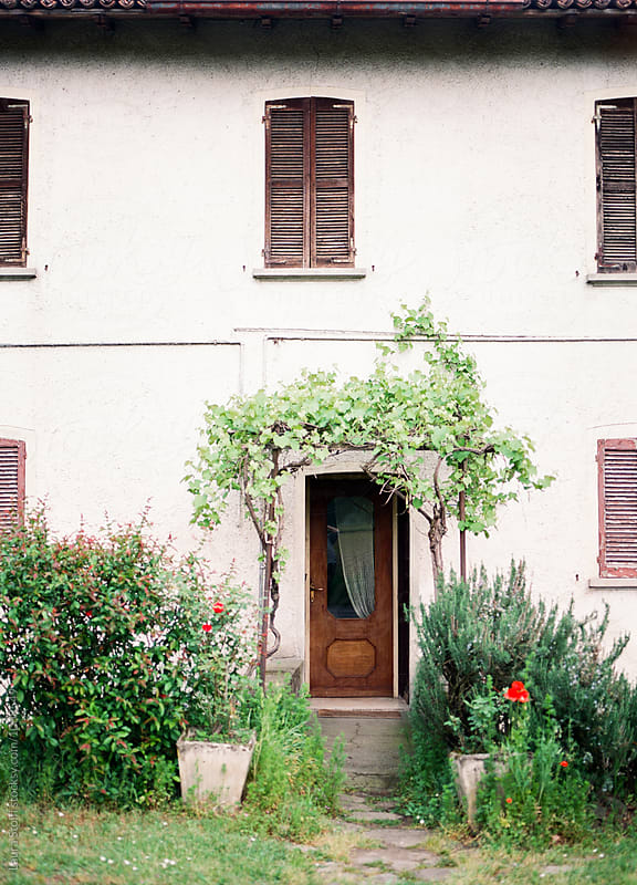 Vine climbing on patio above entrance door in old building, Italy by Laura Stolfi for Stocksy United