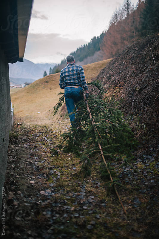 Lumberjack at work by Davide Illini for Stocksy United
