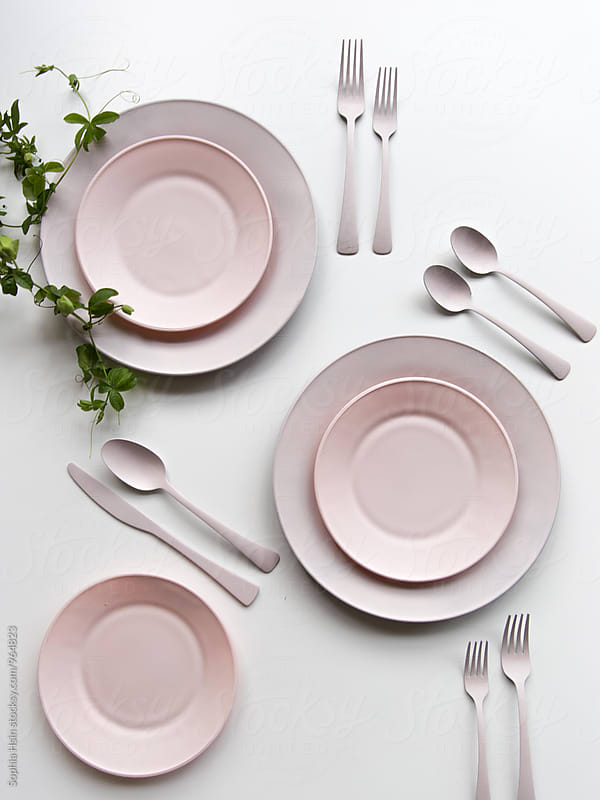 Pink plate and green leaf by Sophia Hsin for Stocksy United