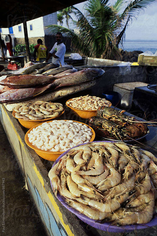 Seafood for sale at outdoor fish market, Salvador, Bahia, Brazil by Paul Edmondson for Stocksy United