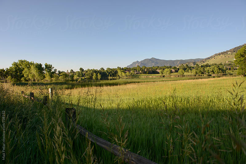 Green wetlands and fence with mountains behind by Mick Follari for Stocksy United