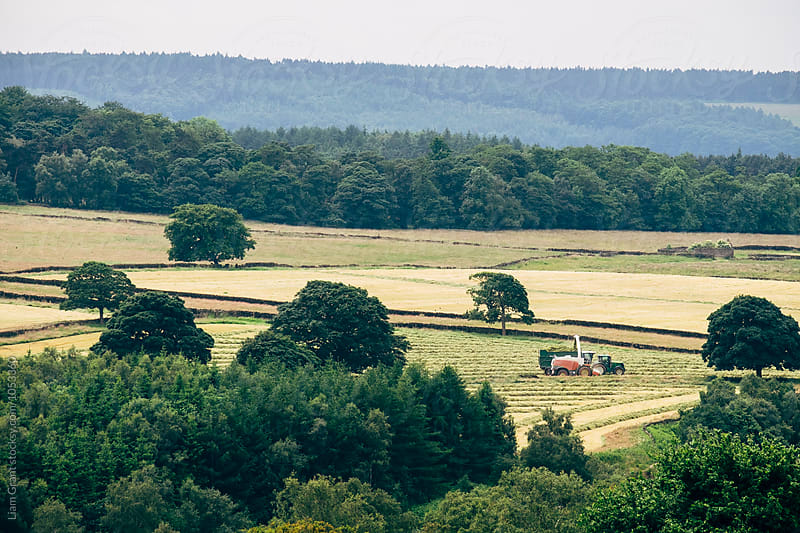 Forgae Harvestor collecting grass to make silage. Derbyshire, UK. by Liam Grant for Stocksy United