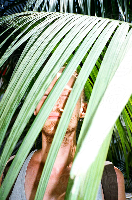 Young man looking at the camera through palm leaf by Di Na for Stocksy United
